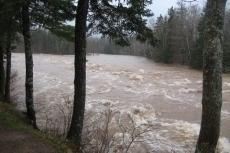 Downstream at Hatchery Pool