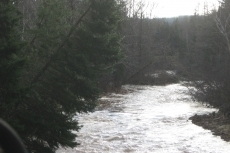 Upstream from Highway Bridge at Big Brook