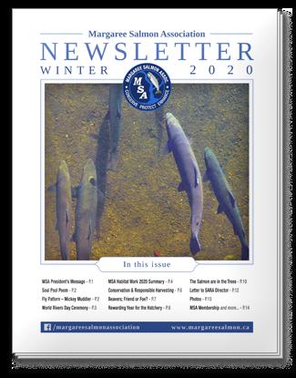 Winter 2020 Newsletter - Margaree Salmon Association