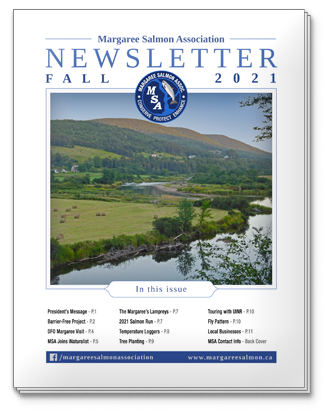 2021 Fall Newsletter - Margaree Salmon Association