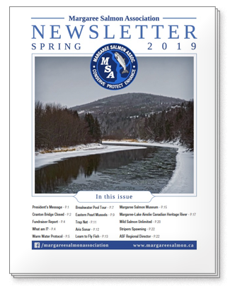 2019 Spring Newsletter - Margaree Salmon Assocaition