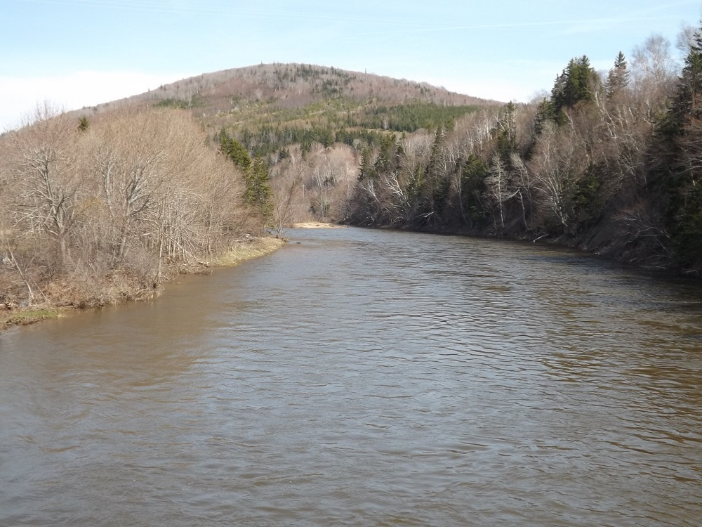 View From Doyles Bridge - May 19, 2015